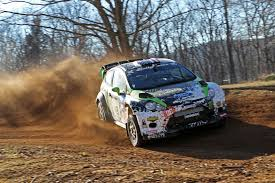 Image result for 100 acre wood rally images