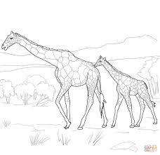 Printable Coloring Pages coloring page giraffe : Mother and Baby Giraffe coloring page | Free Printable Coloring Pages