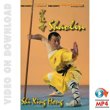 shaolin kung fu kung fu