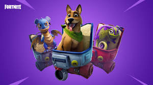 Fortnite Team Spirit Mission: How to pet a teammate's pet | PC Gamer