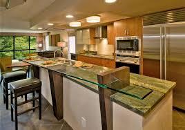Modern Kitchen Remodel Designs Large Refrigerator Built In Oven - Kitchen faucet ideas