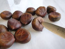 Image result for chestnut