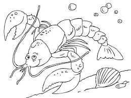 Small Picture 10 best Free Sea Animals Coloring Pages images on Pinterest Free