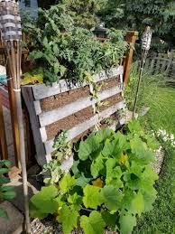 garden diy vertical pallet planter tutorial seed today