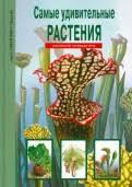 """Книга: """"<b>Самые удивительные</b> растения"""" - Сергей <b>Афонькин</b> ..."""