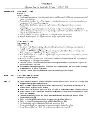 Pricing Analyst Resume Samples Velvet Jobs