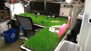 office desk pranks ideas. Office Pranks Covering Desk In Grass Ideas B