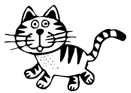"""Résultat de recherche d'images pour """"chat noir et blanc"""""""