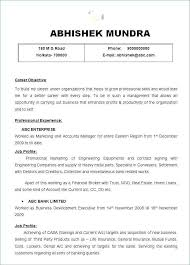 Summary Examples For Resume Unique Example Of Resume Summary Awesome Summary Sample For Resume Good