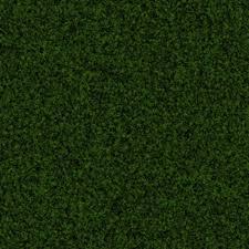 green carpet texture. GOVGRID CARPET SOFT SHAG EMERALD GREEN Green Carpet Texture