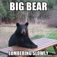 BIG BEAR LUMBERING SLOWLY - Patient Bear | Meme Generator via Relatably.com
