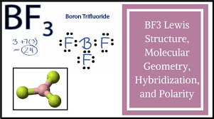 Bf3 Lewis Structure Molecular Geometry Hybridization And