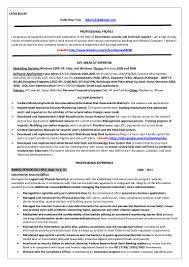 information security officer internet resume leon blum copy network security officer