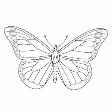 Vlinders Kleurplaten Leuk Voor Kids