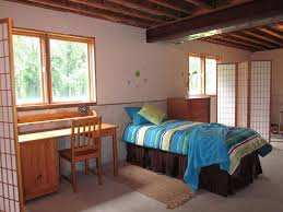 Bedroom Basement Bedroom Ideas Basement Basements Pictures Gallery