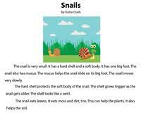 Can be in trees or caves. 1st Grade Reading Comprehension Worksheets