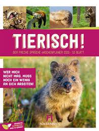Tierisch Wochenplaner Ackermann Kalender