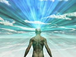 Image result for The Spread Mind, How to Locate Consciousness in the Physical World