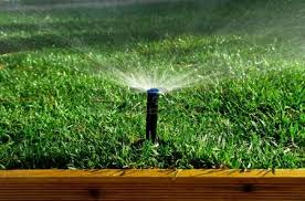 Small Picture Irrigation Stock Photos Pictures Royalty Free Irrigation Images