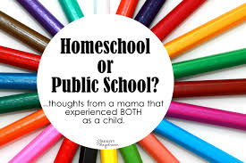 to homeschool or public school reality daydream we did briefly consider homeschooling but it never occurred to me that people might wonder why we made our decision