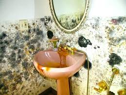 black mold in bathroom black mold in sink tips black mold removal in bathroom black mold