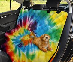 colorful tie dye abstract art car back