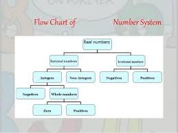Real Number System Chart Real Number System Flow Chart Bedowntowndaytona Com