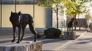 New Mexico S Flagship University The University Of New Mexico