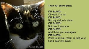「cat poem」の画像検索結果