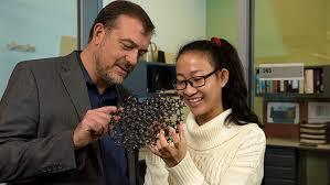 Renewable Energy Leader | Chemical & Biomolecular Engineering at University  of Delaware