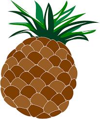 pineapple tumblr png. pineapple, food, fruit, hawaii, hawaiian, luau pineapple tumblr png