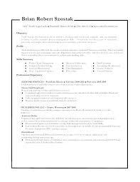 Self Employed Handyman Resume Self Employed Resume Construction Handyman Construction Resume