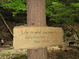 Cool Quotes Throughout The Woods Picture Of Evergreen Trails Impressive Woods Quotes