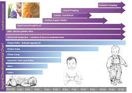 Infant Reflex Integration Chart Reflex Chart Inspiral