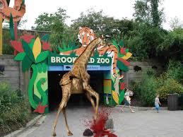 brookfield zoo logo. Plain Brookfield Sockyu0026039sgiraffe On Brookfield Zoo Logo