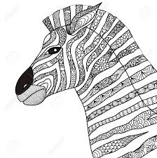 Hand Drawn Zebra Style For Coloring Book Royalty Free Cliparts