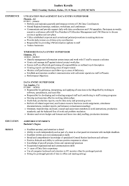 Supervisor Responsibilities Resume Data Entry Supervisor Resume Samples Velvet Jobs 13