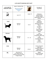 Dachshund Size Chart Beagle Puppy Size Chart Mixed Breed Puppy Growth Chart Mini