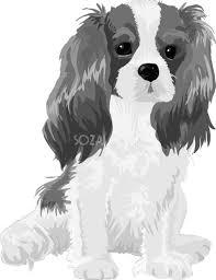 キャバリアの白黒モノクロでかっこいい犬の無料イラスト68067 素材good