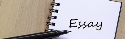 essay tutorial guide tutorial on how you can achieve the best marks out of your essay paper