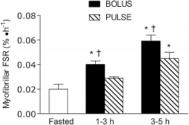 Research Review Fast Vs Slow Whey For Protein Synthesis