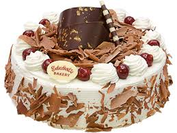 Birthday Cake Png Photospng