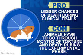 all the animal testing pros and cons that you never knew about