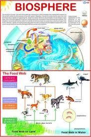 Biosphere Chart