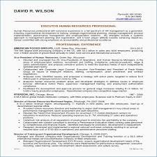 Draftsman Job Description Resume Bestresumeideas Resume Objectives