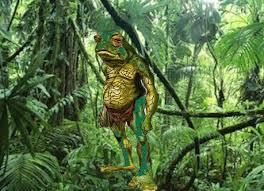 amazon rainforest. Interesting Rainforest For Amazon Rainforest E