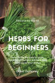 the 10 best herbs to grow for beginners