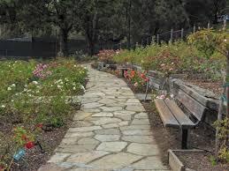 berkeley rose garden 16
