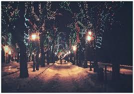 Christmas Lights Quotes Simple Christmas Lights Quotes Winter Night Quotes Quotesgram