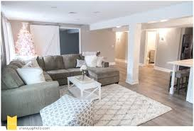 Basement Apartment Design New Basements Design Ideas Recent Finished Basement Designs Decor Ideas